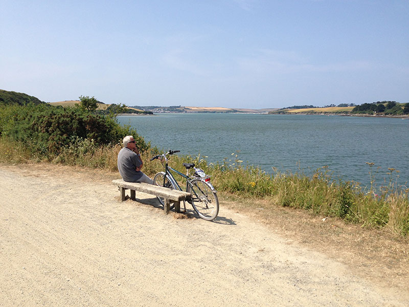 Camel Trail for cyclists
